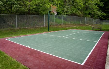 Multi-sport Court